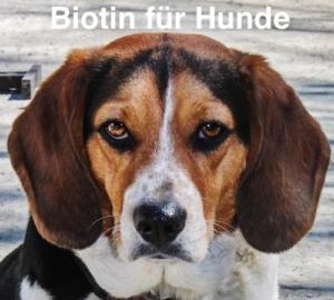 Biotin Hunde