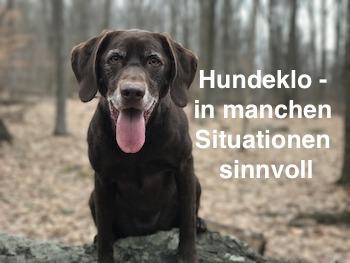 Hundeklo in manchen Situationen sinnvoll