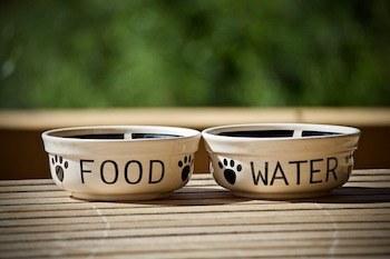Hundefutter und Wasser