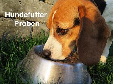 Hundefutter Proben